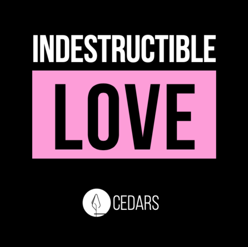 Indestructible Love